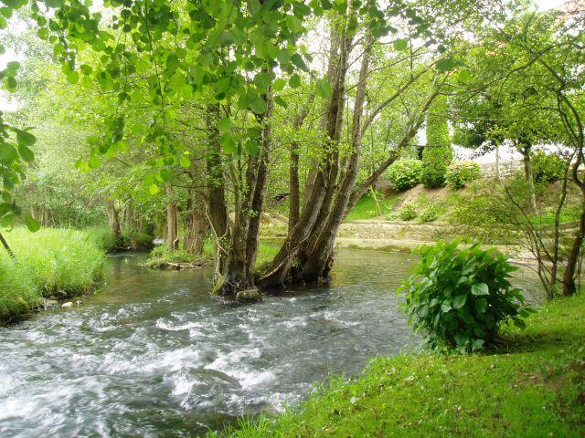 Rio Saja por Ruente
