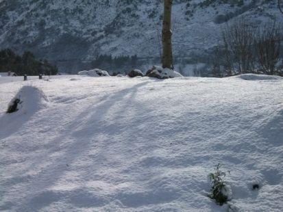 nieve en Celis