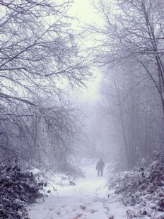 nieve en coó de buelna