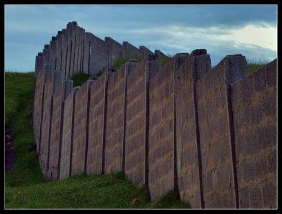 El muro .