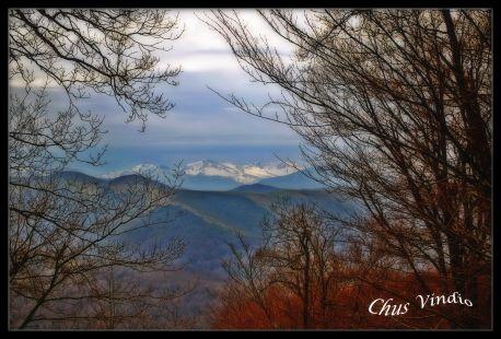 Montes de Ucieda