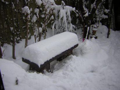 Madrugada del 25 de Diciembre 2010