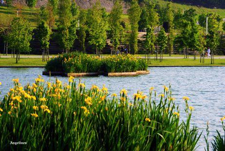 La laguna de Las Llamas