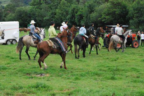 Concentraci�n de caballos de Mata