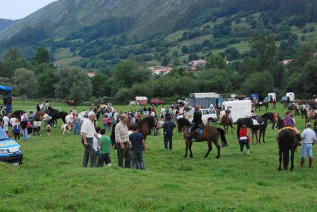 Concentraci�n de caballos en Mata