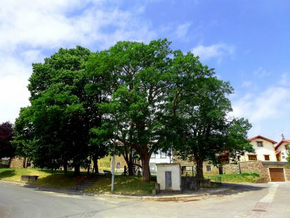 Mataporquera