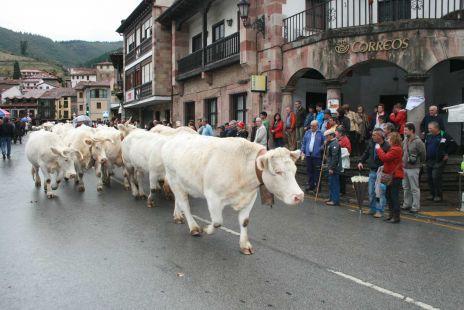 Feria de Los Santos