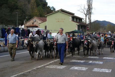 Feria de San Martín en Treceño