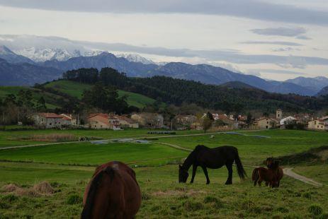 Serdio(Val de San Vicente)