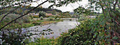 Rio Saja-Besaya a su paso por Barreda