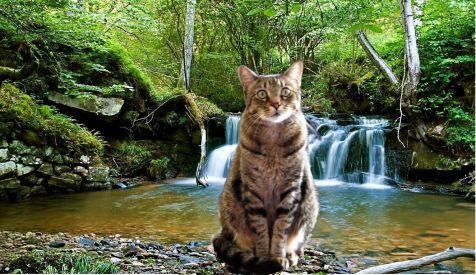 Felix en la cascada de Hinojedo