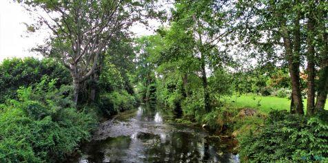 Rio Aguanaz en Entrambasaguas