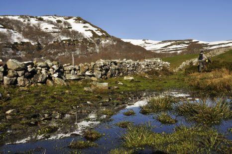 camino de la colina