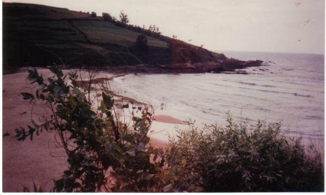 Playa de Cóbreces