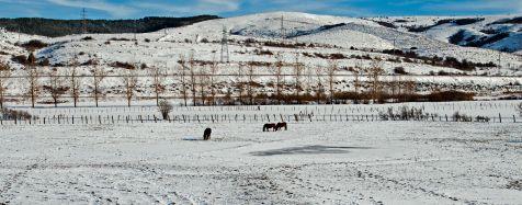 Nieve en Reinosa