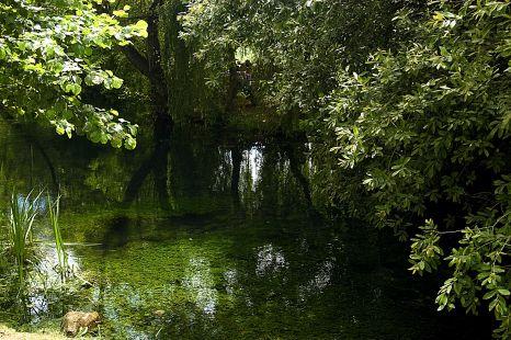 Parque de la Fuentona ( Ruente )