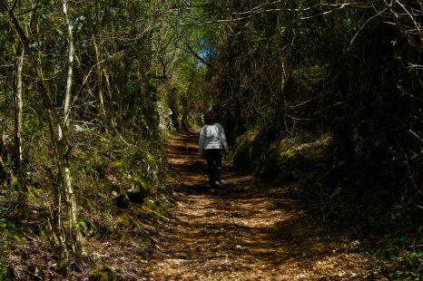 Camino minero
