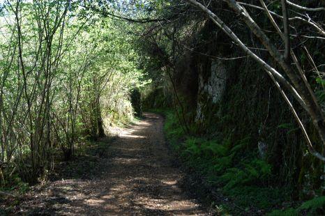 Camino de la mina de Udias