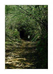 Tunel minero de Udias