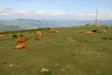 paisaje desde el cilda
