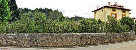 Novales, pueblo de los limones