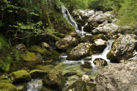 rio urdon