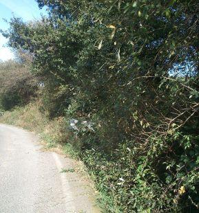 N-634a carretera subida a La Montaña (Torrelavega)