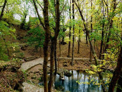 Nacimiento del Ebro.