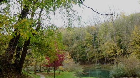 Los colores del otoño, en el Nacimiento del Ebro