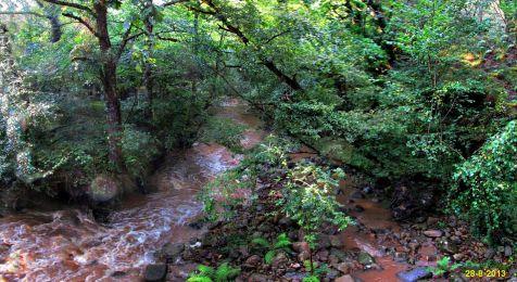 Rio Bayones en los montes de Ucieda