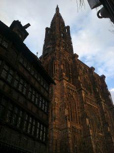 Desde la Catedral