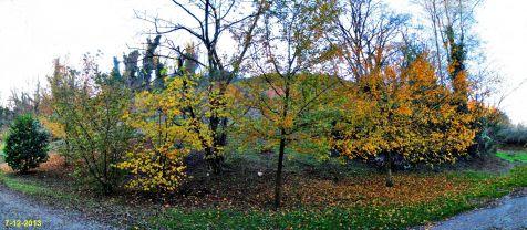 La Viesca, colores de otoño
