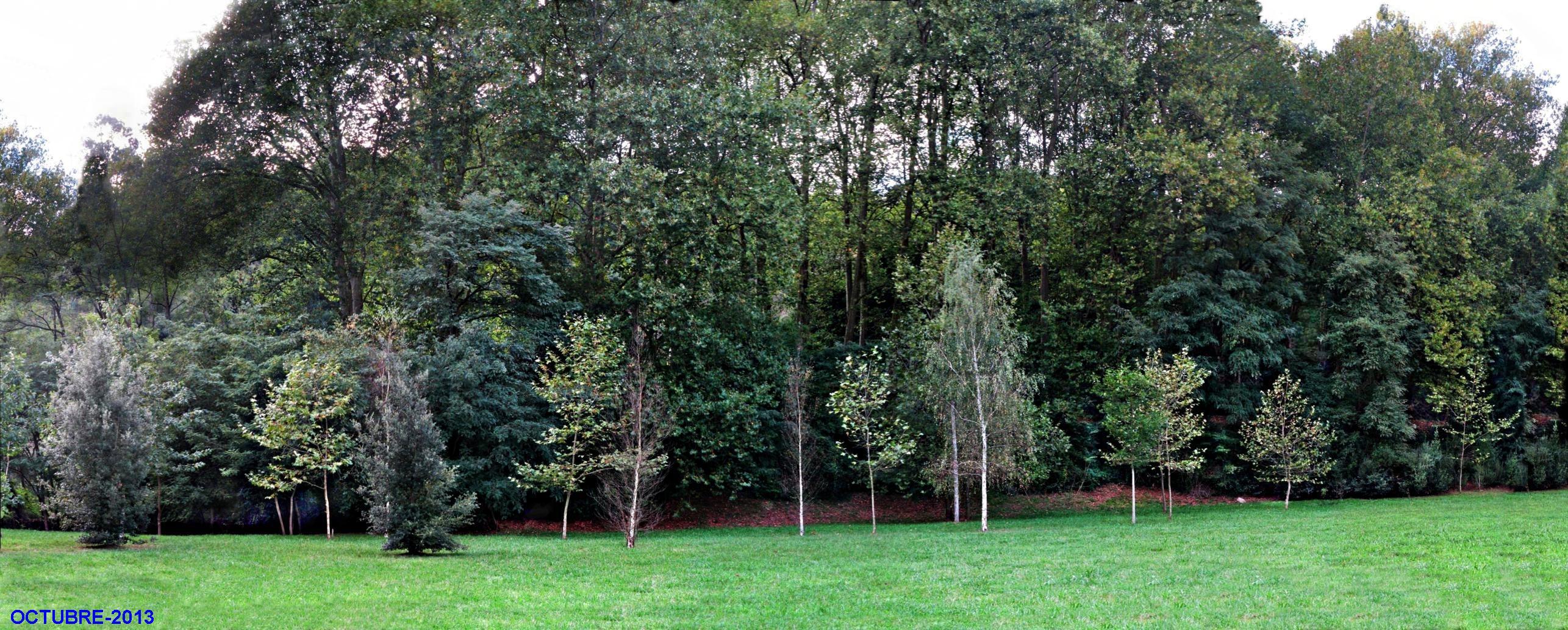 La viesca en oto o fotos de parques y jardines for Parques y jardines fotos