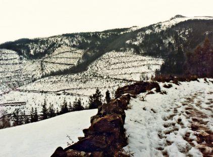 El Dobra nevado. Antaño