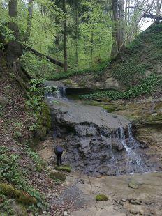 Cascada en los bosques de Horgen