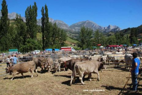Concentraci�n ganadera y fiesta de San Isidro en Tama