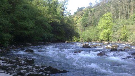 rio ason
