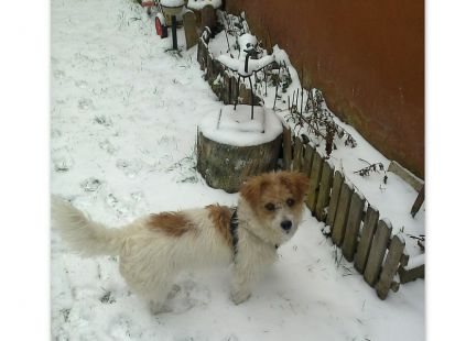POL y la nieve