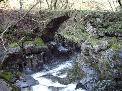 El Puente del Cerezo