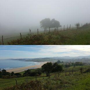 Lo que la niebla esconde